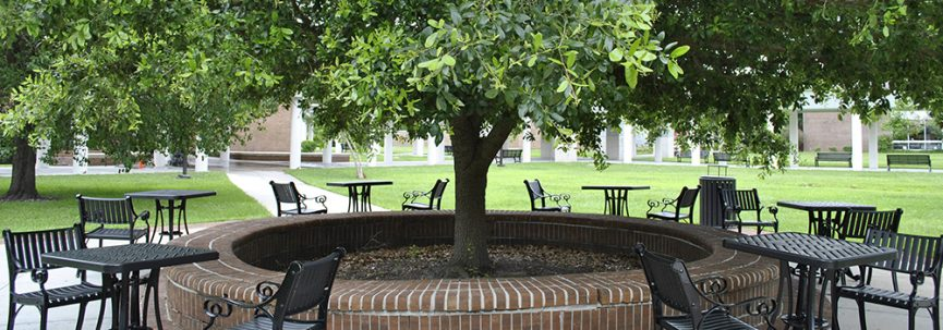 A photo of the shaded seating area between CA and CB